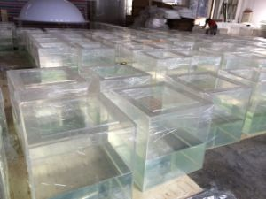 Clear and High Quality of Square Acrylic /Plastic Tank
