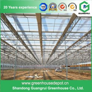 Vegetable Growing Intelligent Glass Greenhouse with Long Term Use pictures & photos