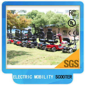 Double Seat Handicapped Electric Mobility Scooter 1300watt pictures & photos