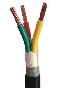 1kv Copper Conductor XLPE Insulation PVC Sheath Shielded Electrical Power Cable pictures & photos