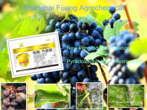 New Bactericide with High Efficent Wdg of Pyraclostrobin+Metiram Fungicide pictures & photos