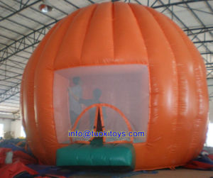 Brend New Inflatable Bouncer for Party and Events (A177)
