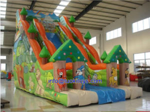 Affordable Inflatable Slide for Kid and Children (B007)