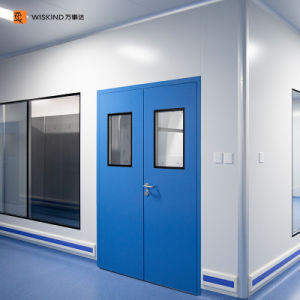 50mm High Quality Metal Interior Steel Cleanroom Swing Door for Laboratory and Hospital