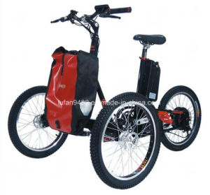 250W Adult Electric Trikes with Basket (SL-132) pictures & photos