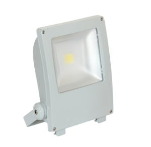 Creative High Power COB Bridgelux LED Flood Light with Meanwell Drivel pictures & photos