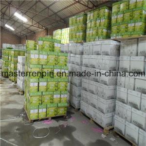 Thailand Double a Copy Paper/A4 Copier Paper/A4 Photocopy Paper Facoty  Supply/Manufacturer