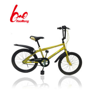 Aluminium Alloy Rim Kids Bicycle with Lazyback