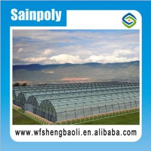 Hot Sale Agricultural Greenhouse for Vegetables Growing pictures & photos