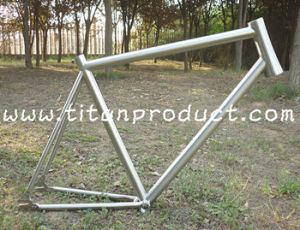 Titanium Track Frame with Tapered Head Tube/Integrated Seat Clamp