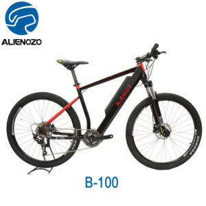 Aluminum Alloy Frame Material And No Foldable Motorized Bicycle