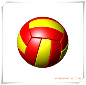 Professional Volleyball of Gift pictures & photos