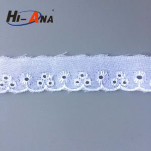 Rapid and Efficient Cooperation Hot Sale Swiss Lace pictures & photos