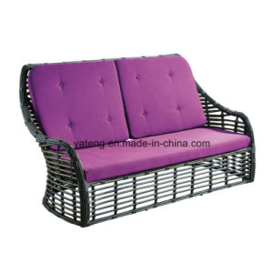 Top Level Environmental PE Rattan Outdoor Furniture Double Sofa for Living Room pictures & photos