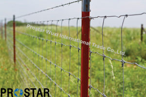 Field Wire Mesh Cattle Fencing for Perimeter Fence pictures & photos