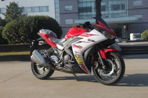 2017 New Model R3 Racing Bike 150cc 200cc 250cc 350cc pictures & photos
