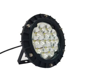 High Protective LED Highbay Light (BEZ 220/30 55 Y)