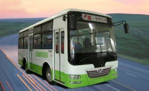 Bus and Bus Chassis (SLG6730T3GE)