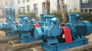W. V Horizontal Lubricating Oil Twin Screw Pump pictures & photos