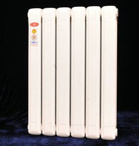 Household Hot Water Heated Aluminum Radiator