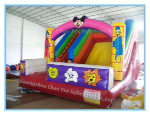 Best Quality Inflatable Bouncy Castle for Sale (CY-M2075) pictures & photos