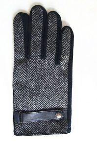 Men′s Fashion Leather Gloves (JYG-24092) pictures & photos