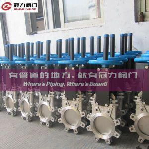 Stainless Steel ANSI Knife Gate Valve pictures & photos