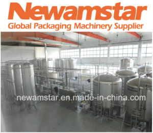 Water Treatment and Mixing CSD Beverage Newamstar pictures & photos