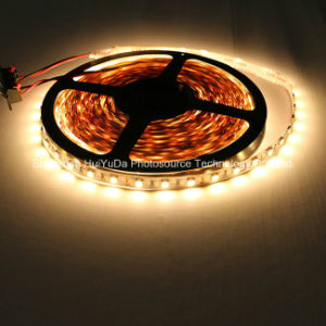 White Color IP20 SMD5050 Chip 60LEDs 14.4W DC24V LED Strip pictures & photos