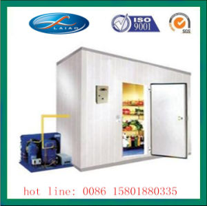 Customized Used Cold Room for Sale pictures & photos
