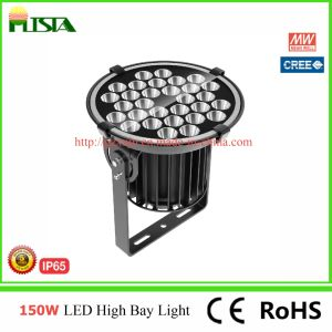500W New LED Flood Light with CREE LED/Meanwell Driver