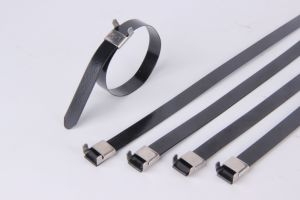 UL, Ce, RoHS, ISO9001: 2008, Plastic Covered PVC Coated Stainless Steel Cable Tie pictures & photos