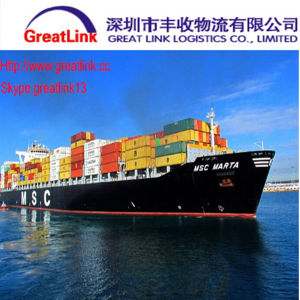 FCL Ocean Shipping From Xiamen of China to Genova, Italy