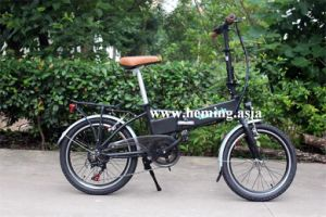 "20"" Tire 250W Folding Electric Bike En15194"