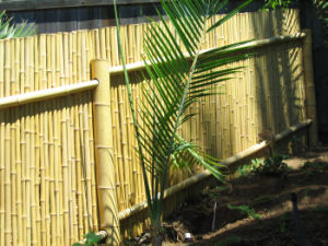 Bamboo Fencing pictures & photos