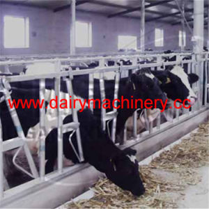 3mm Thickness Cow Headlock for Cow Farm pictures & photos