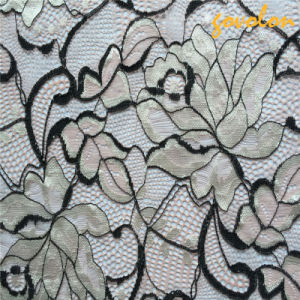 Nylon Embroidery Lace Decoration for Textile pictures & photos