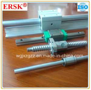 Ersk Brand Common Linear Bearing Shaft pictures & photos