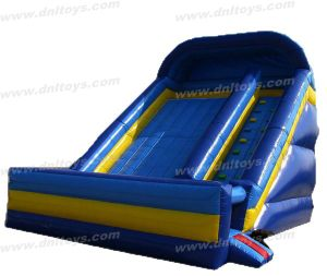 Kids Inflatable Slide (DNL-IB-010)