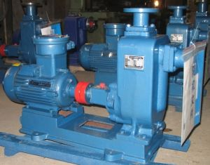 Horizontal Self-Priming Sewage Pump with Open Impeller