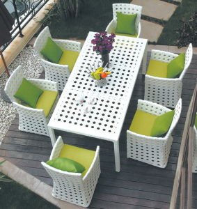 Garden/ Wicker Furniture Set (RHJ013)