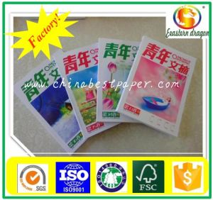 C2s Art Paper 135GSM (80-450G) pictures & photos