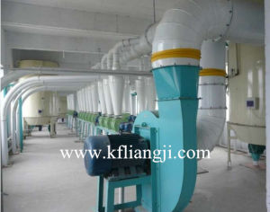 Wheat and Maize Flour Milling Plant
