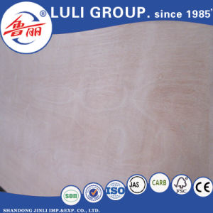 Keruing/Gurjan Plywood for India Market pictures & photos