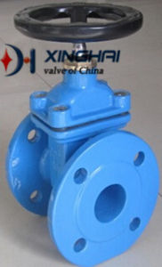 China Largest Valve Manufacturer Cast Iron DIN F4 Resilient Seated Gate Valve