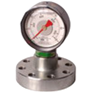 Flanged Mud Pump Pressure Indicator (FLANGED SERIES) pictures & photos