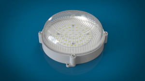 Outdoor Oval Shape Industrial LED Bulkhead Wall Light