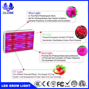 Apollo 8 360W Full Spectrum LED Grow Lights for Greenhouse pictures & photos