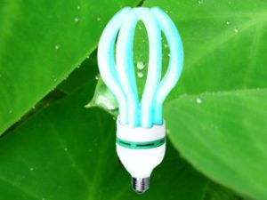 Compact Lamp Bulb 105W Lotus 3000h/6000h/8000h 2700K-7500K Energy Saving Tube pictures & photos