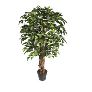 Artificial Ficus Tree with Natural Trunk in 7 Inch Plastic Pot